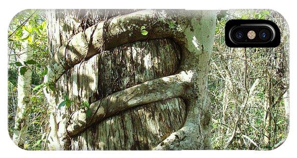 Tree Hugger 5 Phone Case by Van Ness