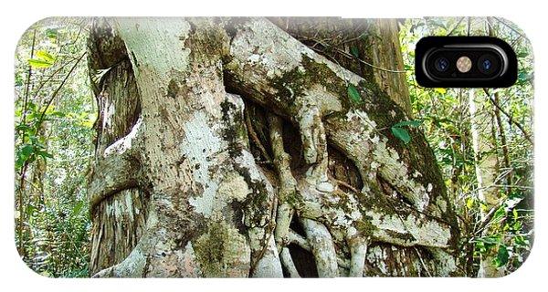 Tree Hugger 6 Phone Case by Van Ness