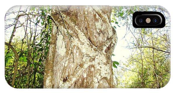 Tree Hugger 7 Phone Case by Van Ness