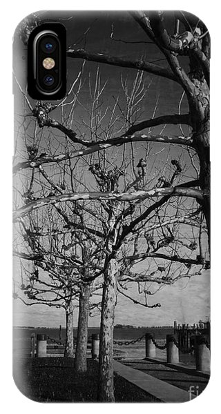 Tree In A Row  IPhone Case