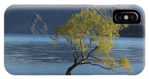 Tree In Lake Wanaka IPhone Case