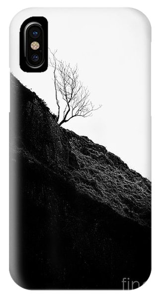 Beautiful Scotland iPhone Case - Tree In Mist II by John Farnan