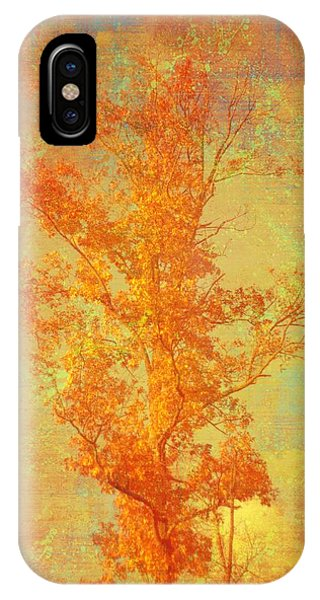 Tree In Sunlight IPhone Case