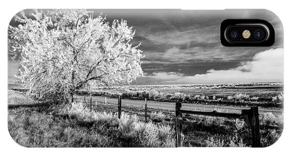 Tree In Winter IPhone Case