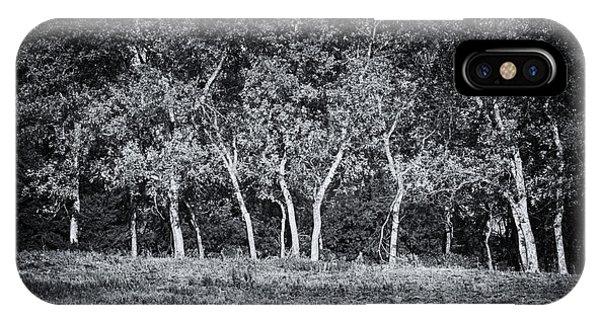 Tree Line In Autumn  IPhone Case