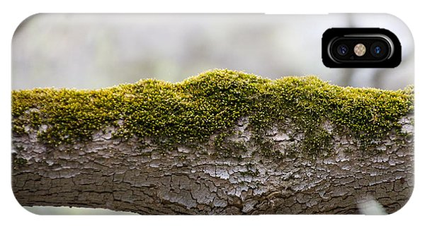 Tree Moss Phone Case by Mark Holden