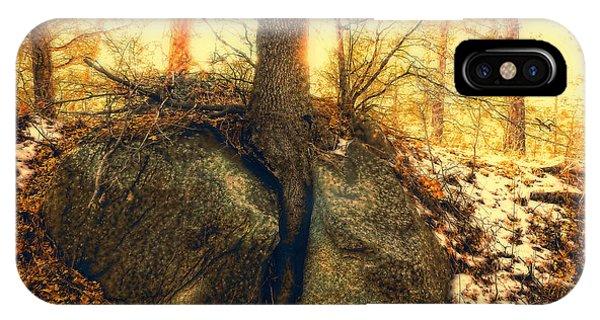 Tree Of Inspiration Phone Case by Douglas MooreZart