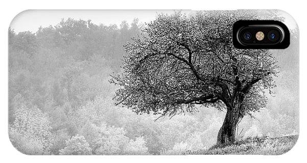 Tree On Marilla Hill IPhone Case