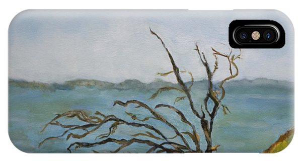 Tree On The Hudson River IPhone Case