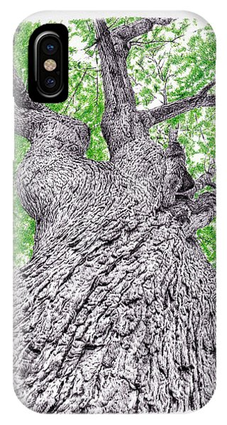 Coloured Pencil iPhone Case - Tree Pen Drawing 4 by Remrov
