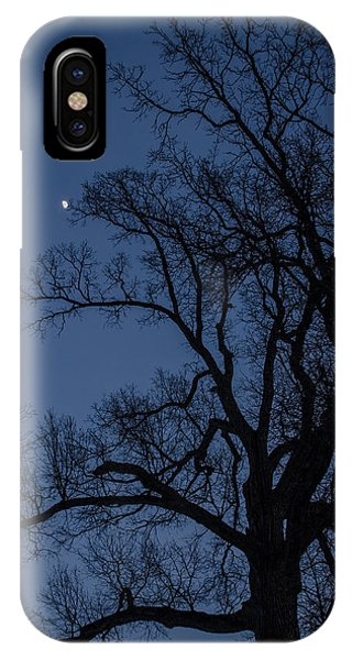 Tree Reaching For The Moon IPhone Case