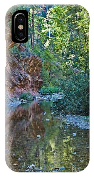 IPhone Case featuring the photograph Tree Reflection by Mae Wertz