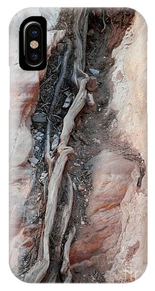 Tree Root Embedded IPhone Case
