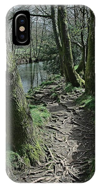 iPhone Case - Tree Route Pathway by Kathy Spall