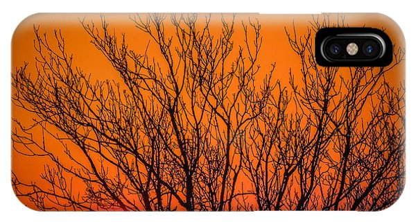 Tree Silhouetted By Irish Sunrise IPhone Case