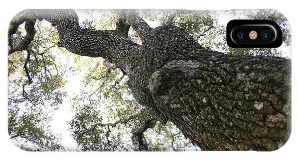 Tree Still IPhone Case