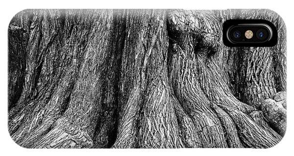 Tree Trunk Closeup IPhone Case