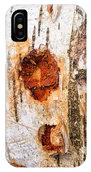 Tree Trunk Closeup - Wooden Structure IPhone Case