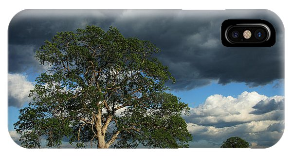 Tree With Storm Clouds IPhone Case
