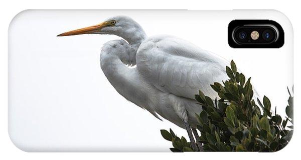 Treed Egret IPhone Case