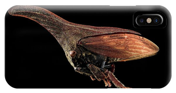 Adapted iPhone Case - Treehopper by Us Geological Survey