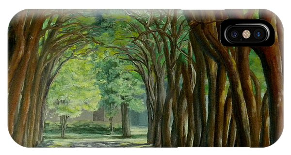 Treelined Walkway At Lsu In Shreveport Louisiana IPhone Case