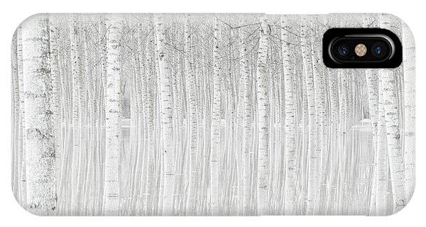 Birch Tree iPhone Case - Trees by Aglioni Simone