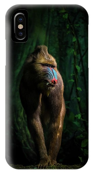 Jungle iPhone Case - Trees And Beasts! by Isma Yunta