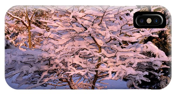 Trees Covered In Snow Phone Case by Maurice Nimmo/science Photo Library
