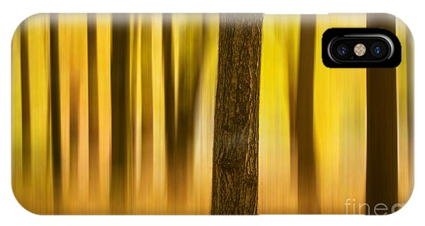 Trees In Autumn Forest IPhone Case