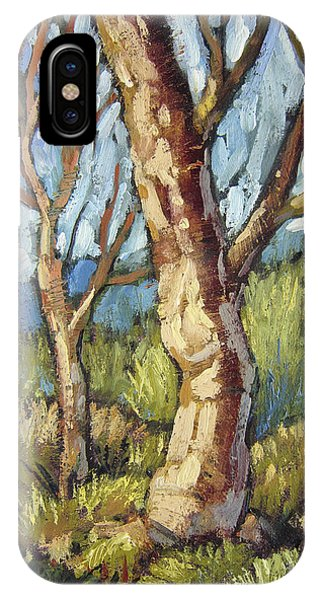 Trees In Spring IPhone Case