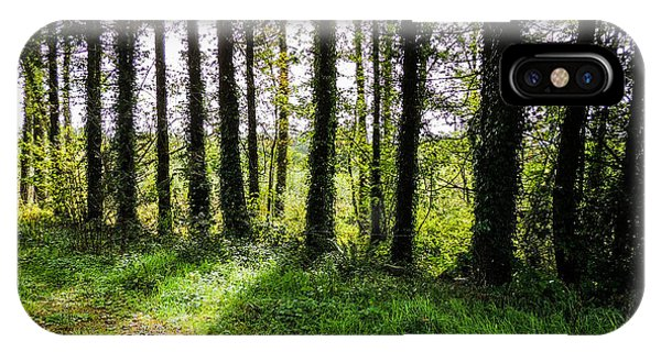 Trees On The Shannon Estuary IPhone Case