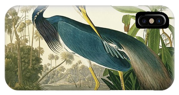 North London iPhone Case - Tricoloured Heron by Natural History Museum, London/science Photo Library