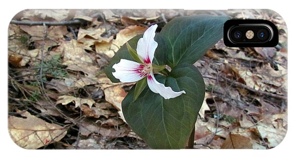 Painted Trillium IPhone Case