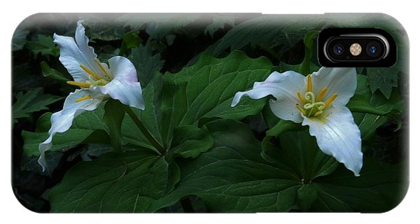 Trillium's Of The Wildwood Phone Case by Charles Lucas