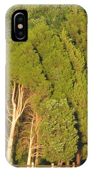 Triple Trees Phone Case by Debbie Nester