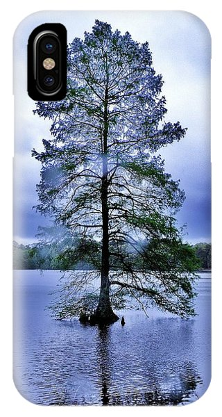 The Healing Tree - Trap Pond State Park Delaware IPhone Case