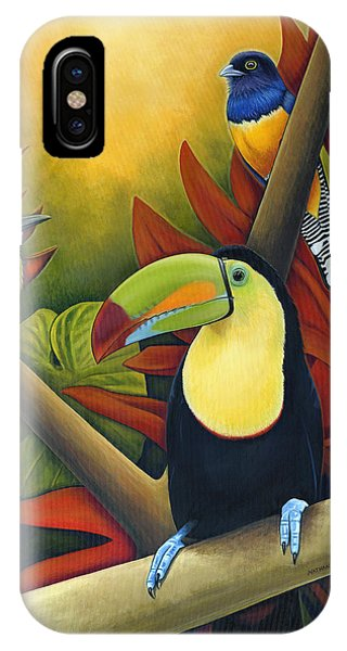 Toucan iPhone Case - Tropical Birds by Nathan Miller