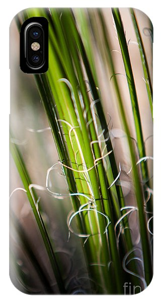 Tropical Grass IPhone Case