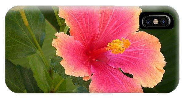 Tropical Hibiscus IPhone Case