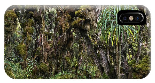 East Africa iPhone Case - Tropical Mountain Forest, Rwenzori by Martin Zwick