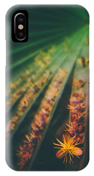 Tropical Ray  IPhone Case