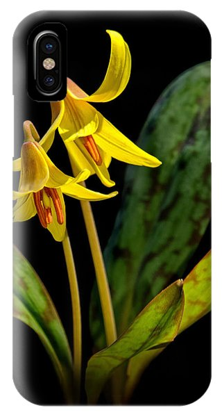 Trout Lilies IPhone Case
