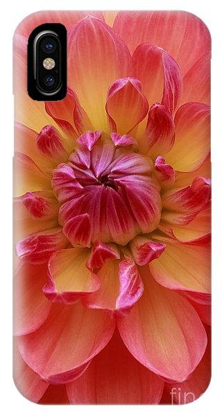 True Beauty IPhone Case