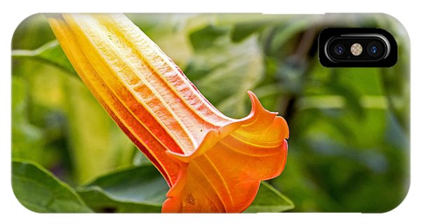 Trumpet Flower IPhone Case