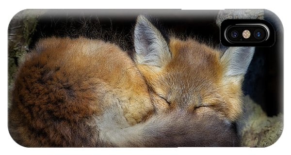 Fox Kit - Trust IPhone Case