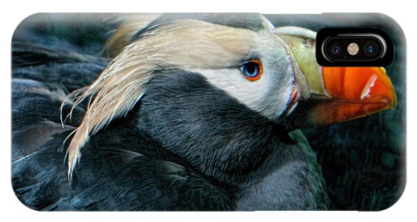 Tufted Puffin Profile IPhone Case