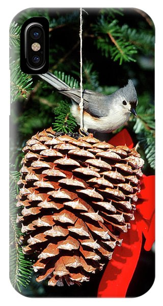 Titmouse iPhone Case - Tufted Titmouse (baeolophus Bicolor by Richard and Susan Day