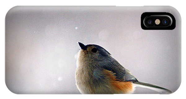 Titmouse iPhone Case - Tufted Titmouse by Cricket Hackmann