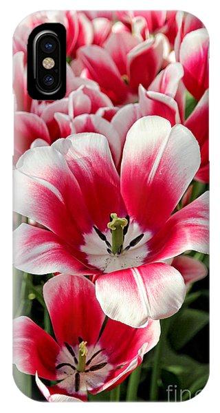 Tulip Annemarie IPhone Case